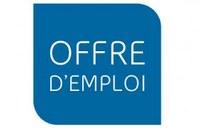 L'Institut français d'Algérie recrute un(e) responsable communication et partenariats. Disponibilité immédiate des candidats.