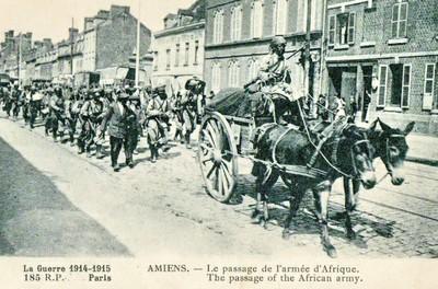 Le monde arabe dans la Grande Guerre, du Maghreb au Machrek