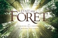 Ciné-doc : Il était une forêt