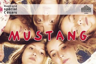 Ciné-grand public : Mustang