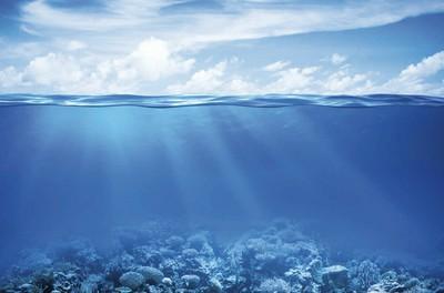 L'ECONOMIE BLEUE. Est-il possible d'exploiter durablement les ressources de l'océan ?
