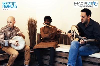Trio Hiwar